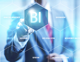 Business Intelligence & Analysis, MIS